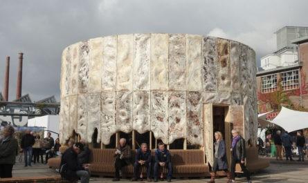 Дома из грибов: невероятная альтернатива бетону