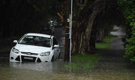 Ливни потушили лесной пожар в австралийском Новом Южном Уэльсе