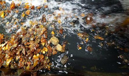 Производители янтаря пока не заметили спада продаж из-за коронавируса