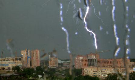 В Москве объявили штормовое предупреждение из-за ветра