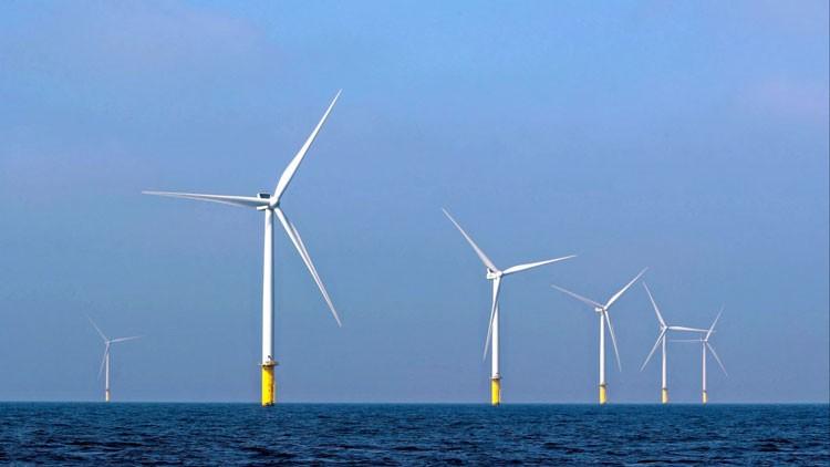 Кризис в экономике и пандемия развенчали миф о выгоде возобновляемой энергетики