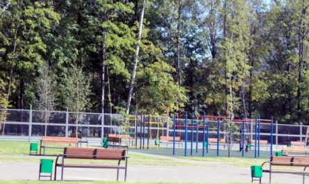 В коммунальной зоне «Чечера» одобрили размещение двух спортивных объектов