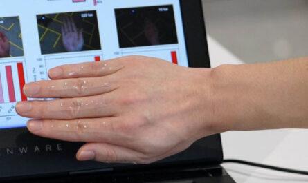 ИИ научили понимать связь между кожей и мозгом человека