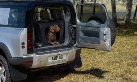 Jaguar Land Rover напечатала на 3D-принтере собачью лапу для оценки качества покраски