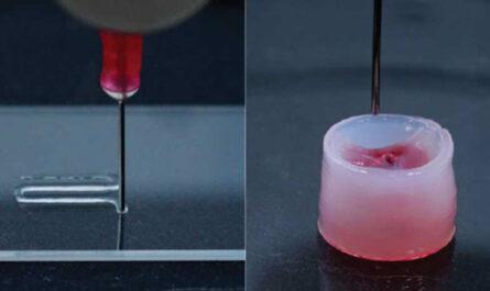 Разработан универсальный носитель для струйной 3D-печати имплантатов
