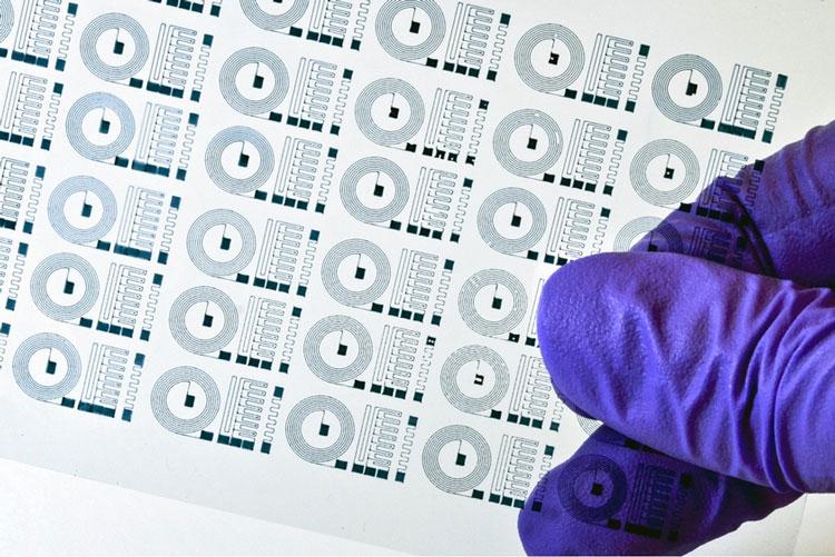 «Резиновые» электроды помогут лучше считывать сигналы с мозга