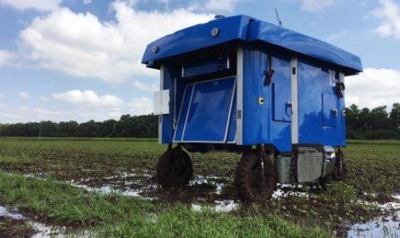 Роботы-фермеры от Alphabet помогут прокормить растущее население Земли