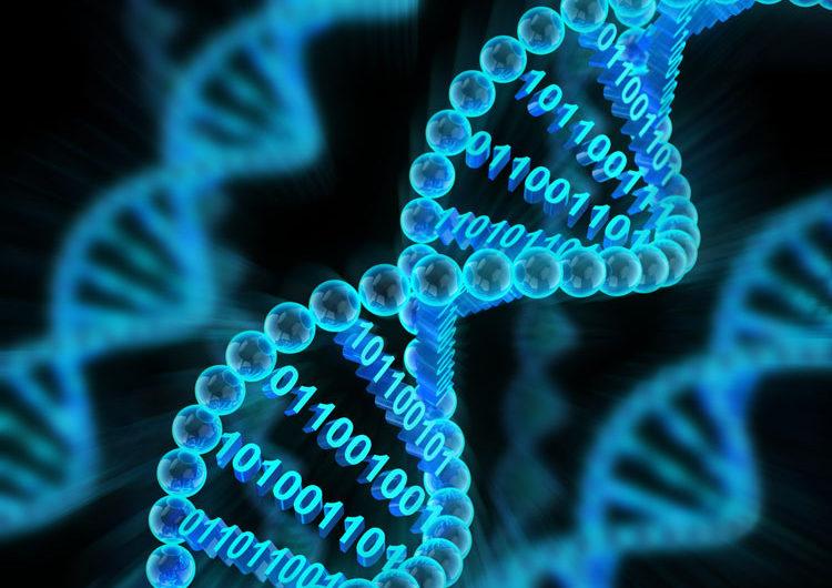 Природный жёсткий диск: Western Digital и Microsoft будут развивать системы хранение данных на ДНК