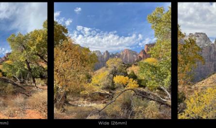 Профессиональный фотограф сравнил камеры iPhone 12 Pro и iPhone 12 Pro Max