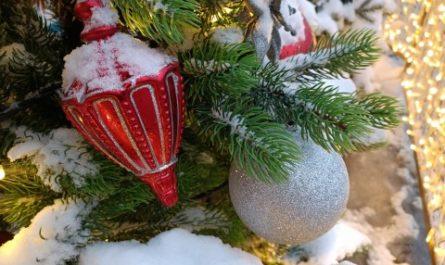 Остановить мгновение: как передать новогоднюю атмосферу на фото
