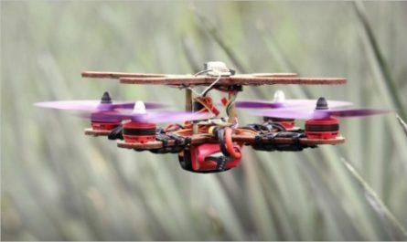 Инженеры из Малайзии показали работу ананасовых дронов