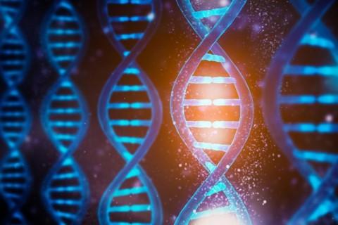 Исследователи научились управлять функциями ДНК при помощи света