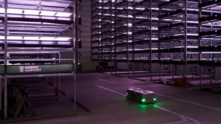 Самая большая вертикальная ферма в Европе обслуживается роботами