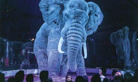 В немецком цирке животных заменили гигантскими голограммами