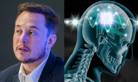 Испытания мозговых имплантатов Neuralink на добровольцах начнутся в этом году, если «всё пойдёт хорошо»