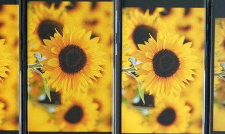 Экран Galaxy S21 Ultra стал лучшим среди смартфонов по версии DxOMark