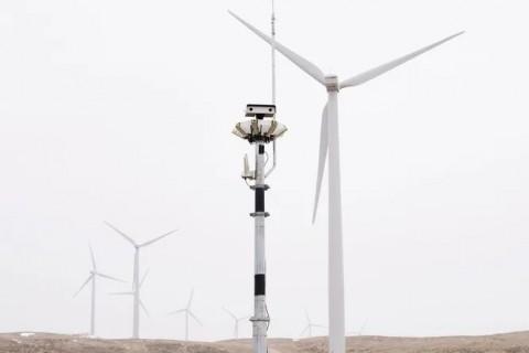 Камера с ИИ защищает птиц от ветрогенераторов