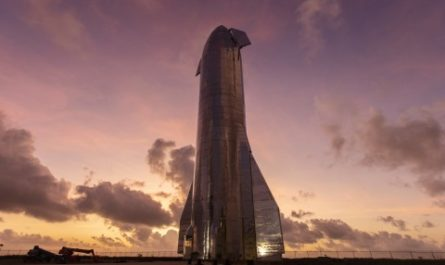 Илон Маск назвал сроки полёта корабля Starship на Марс