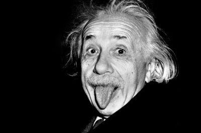 Цифровой Эйнштейн отвечает на вопросы пользователей