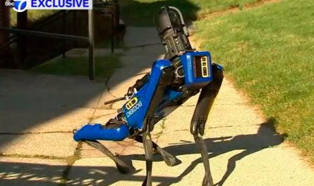 Полиция Нью-Йорка уволила робопса Boston Dynamics— люди его боялись