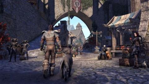 The Elder Scrolls Online стала временно бесплатной на всех платформах