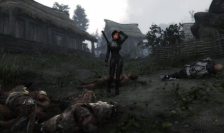 Геймер убил всех людей в TES V и остался единственным жителем Скайрима