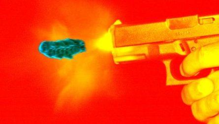 Исследователи ради науки стреляли тихоходками из пистолета