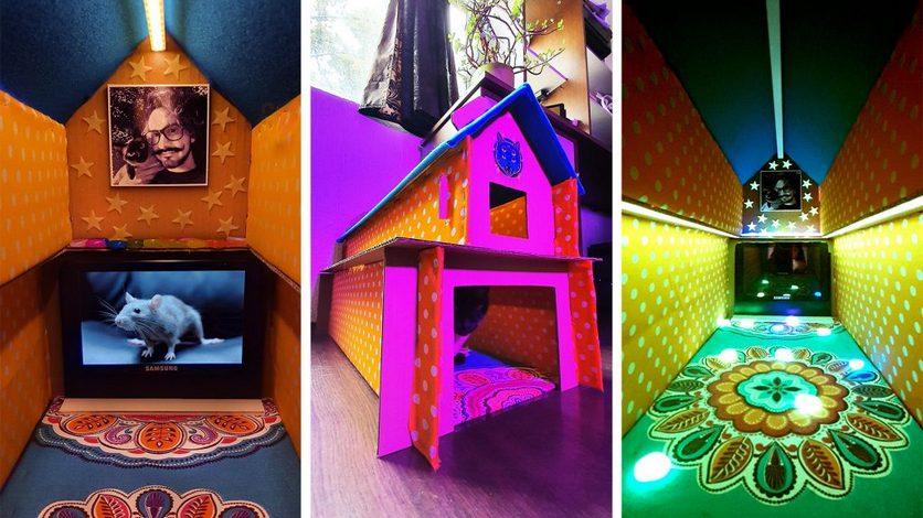 Блогер построил из коробки роскошный кошачий дом со встроенным ТВ [ВИДЕО]