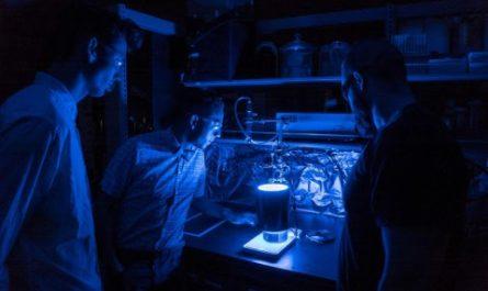 Новый материал утилизирует СО2 и вырабатывает энергию