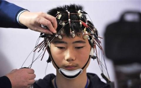 Учёные научились «загружать» знания прямо в мозг