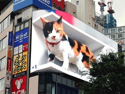В центре Токио поселился гигантский виртуальный кот [ВИДЕО]
