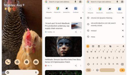Браузер Chrome будет копировать тему оформления Android-смартфона