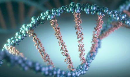 Создан первый процессор на основе ДНК