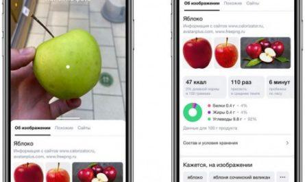 Умная камера «Яндекса» теперь распознаёт еду, машины и уравнения