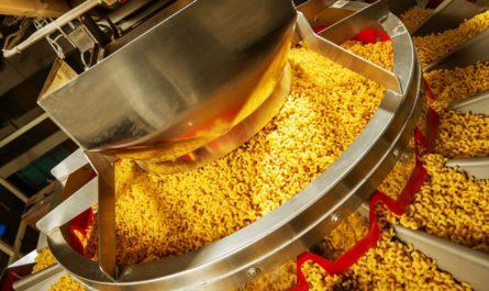 Участок в Вороновском поселении выставят на торги для строительства пищевого производства