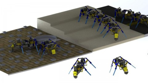 Роботы-муравьи могут маневрировать в сложных условиях и коллективно выполнять задачи